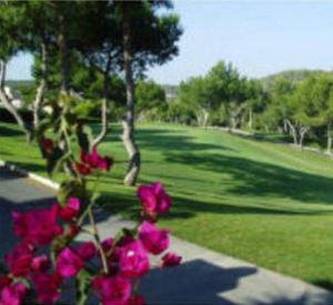 gallery golf
